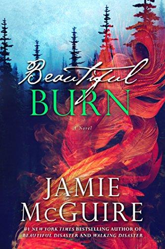 Beautiful Burn By JamieMcGuire